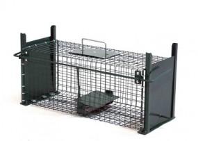 T Lebendfalle Ratte mit Doppeleingängen Lx50cm