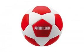 Panini Handball rot/weiß
