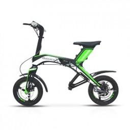 Scooter Elektro Robstep 300 Watt, grün