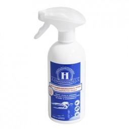 R Autoreiniger & Pflege 500ml Spray HANSING & CO.